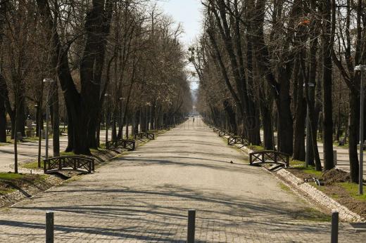 Foto: Paul Gheorgheci/monitorulcj.ro Tot mai mulți români sunt nemulțumiți de experiența vieții în izolare