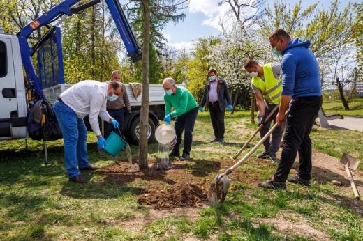 Cluj-Napoca, oraș verde! Unde a plantat Emil Boc arbori în acest weekend