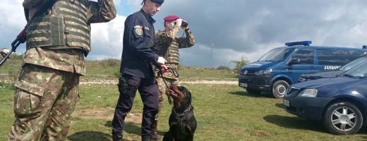 Colonia de rromi dintr-un sat de lângă Cluj, pusă sub carantină, este păzită de militari cu câini