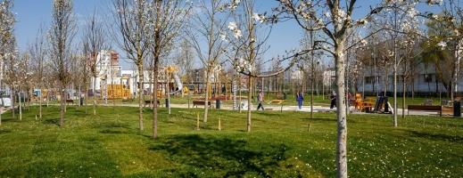 """Cum ne vom relaxa după 15 mai? Clujenii au fost cuminți: """"Parcurile nu sunt închise ca la București!"""", sursă foto: Facebook Emil Boc"""