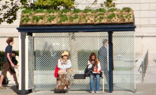 O firmă din Slatina va amenaja 18 stații verzi în Cluj. O bucată costă 5.000 de euro