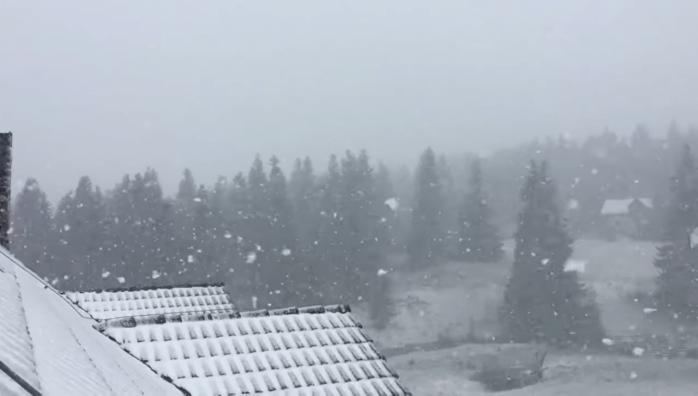 Ninge ca în povești în stațiunile din Cluj. Imagini de necrezut, surprinse la Mărișel și Băișoara