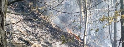 Misiune dificilă pentru pompierii din Huedin. O ardere de vegetație a scăpat de sub control