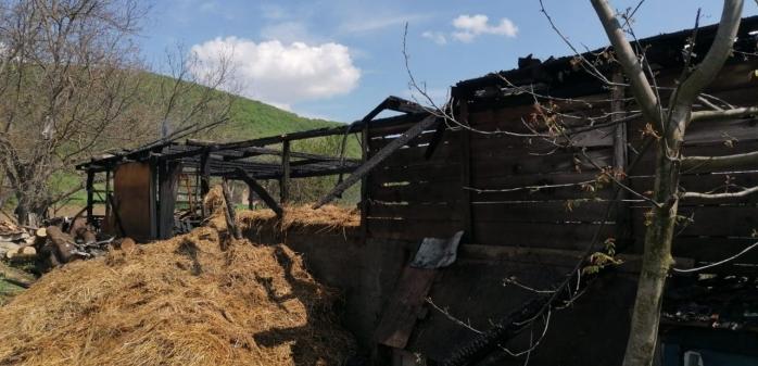 Incendiu la o șură, într-o localitate din Cluj. Mai multe găini au ars de vii