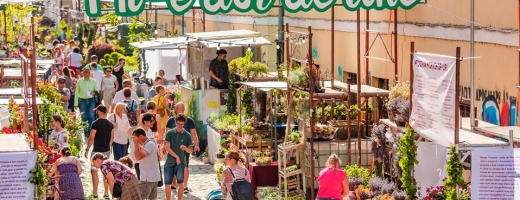 """Potaissa, piața cu flori"""" se mută în mediul online - FOTO/VIDEO"""