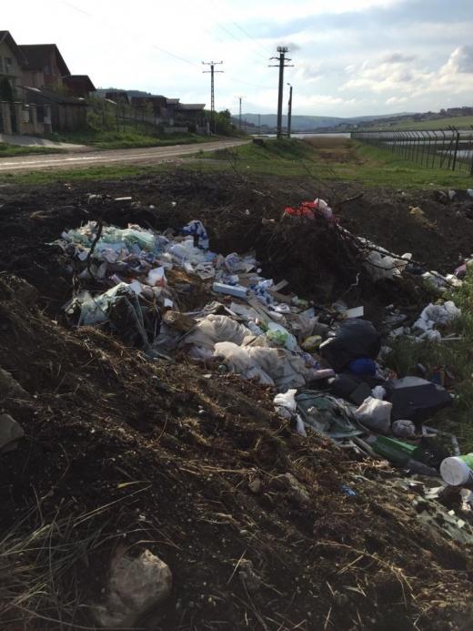 Clujul, județul gunoaielor! Imagini greu de privit provocate de oameni iresponsabili. FOTO