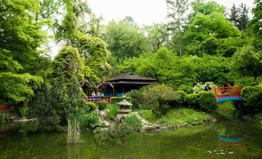 Se redeschid Parcul Iuliu Hațieganu, Grădina Botanică și cantinele UBB