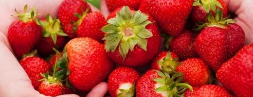 Căpşunele, unele dintre fructele cele mai periculoase
