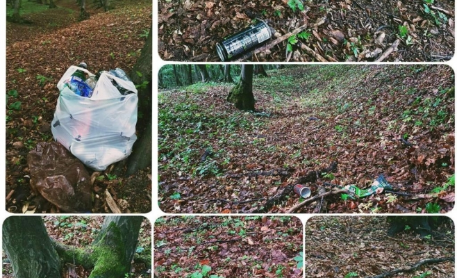 Gunoiae adunate din pădurea din Florești