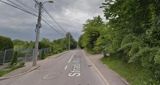 Strada Măceșului
