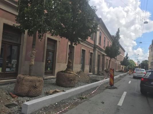SURPRIZĂ plăcută în centrul Clujului. Ce a apărut pe strada Napoca?, foto: Facebook Mircea Crăciun