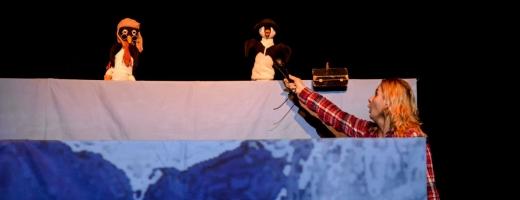 Spectacolul Curtea lui Apolodor Teatrul Puck