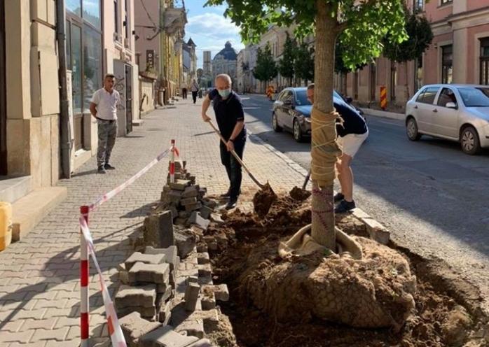 Când cu bâta, când cu zăhărelul! Emil Boc taxează întârzierile la lucrările din centrul Clujului. Ce se întâmplă pe Memorandumului?