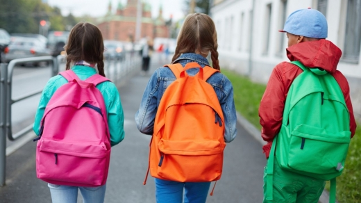 O elevă silitoare cu cerințe speciale are nevoie de mare ajutor! Cum o poți sprijini?