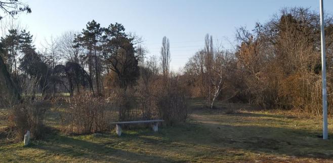 Ce se întâmplă cu Parcul Feroviarilor? Primarul Emil Boc speră la finanțare europeană, sursă foto: Raymond FÜSTÖS