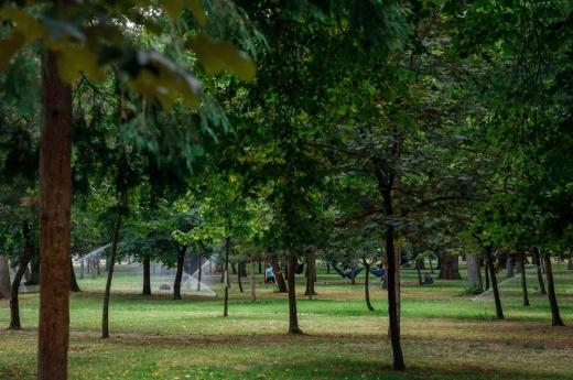 """Parcul Central din Cluj-Napoca, """"stropit"""" cu un nou sistem de irigații anti-vandalism FOTO"""