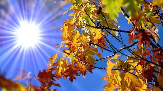 Luna septembrie cu temperaturi de vară. Ce se va întâmpla cu vremea, în următoarele 2 săptămâni?