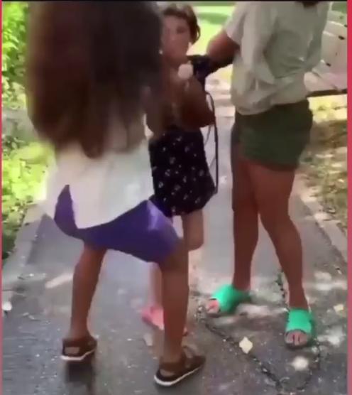 doua-fete-de-11-ani-lovesc-cu-salbaticie-o-fetita-de-8-ani-video
