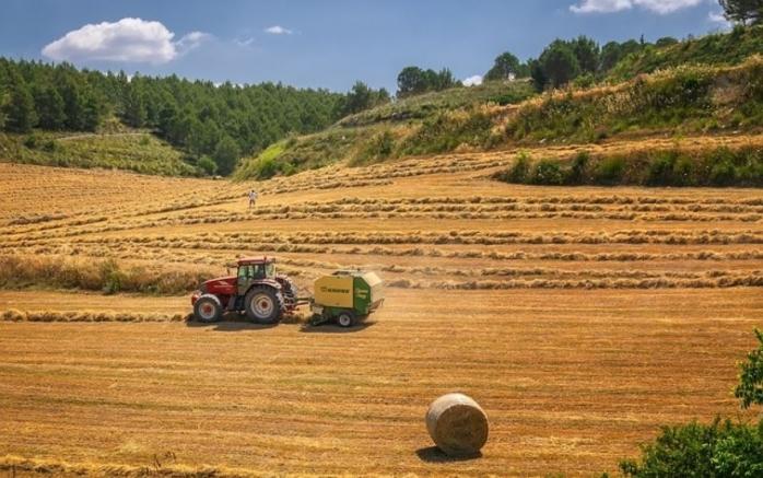 fermierii-primesc-sprijin-financiar-pentru-pierderile-cauzate-de-pandemie
