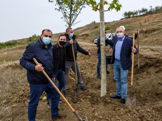 S-au plantat primii arbori din Pădurea Clujenilor! Primarul Emil Boc, cu lopata la treabă