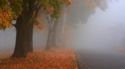METEO: COD GALBEN de ceață la Cluj