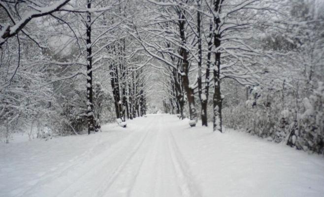 Vreme ca de iarnă la munte, în weekend. Meteorologii anunță zăpadă și vânt puternic