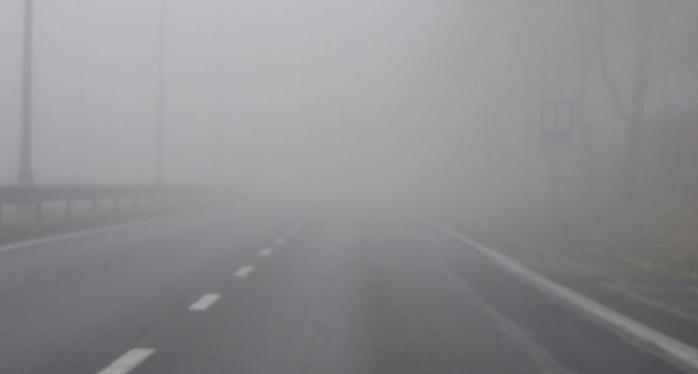 COD GALBEN de CEAȚĂ densă în regiunea Transilvaniei