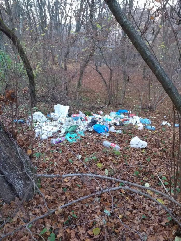 """Hoia-Baciu, plină de gunoaie! Deșeurile sunt aruncate din mașini în pădure. """"N-avem ce face altceva fără poliție locală. Le strângem.""""FOTO"""