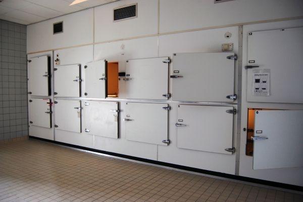 Persoanele decedate de COVID19 sunt depozitate în CONTAINERE pentru că morgile NU mai au locuri