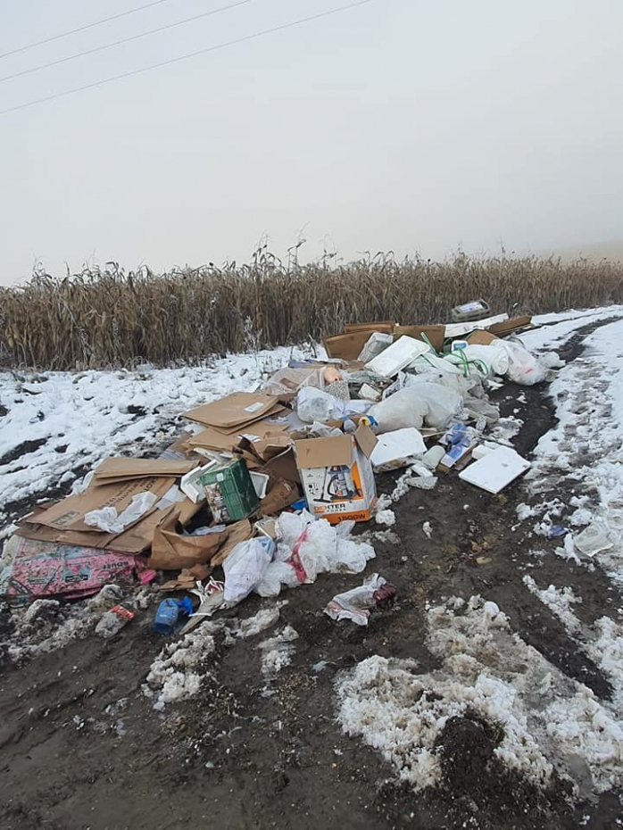 """Clujul se umple de gunoaie în spațiile verzi. Cât costă amenda pentru """"abandonarea"""" deșeurilor?"""
