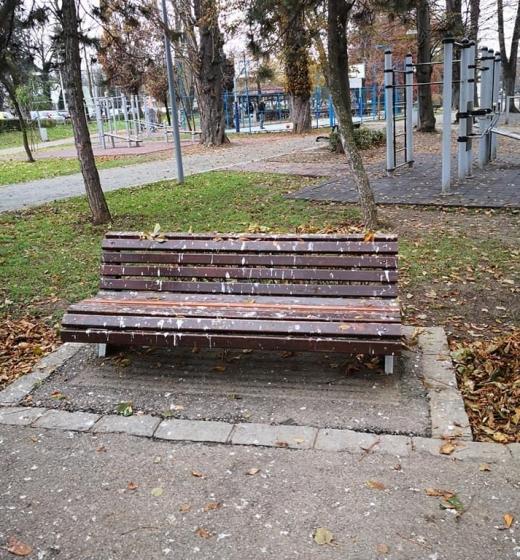 Imagini dezolante cu Parcul Central. O problemă de sezon?