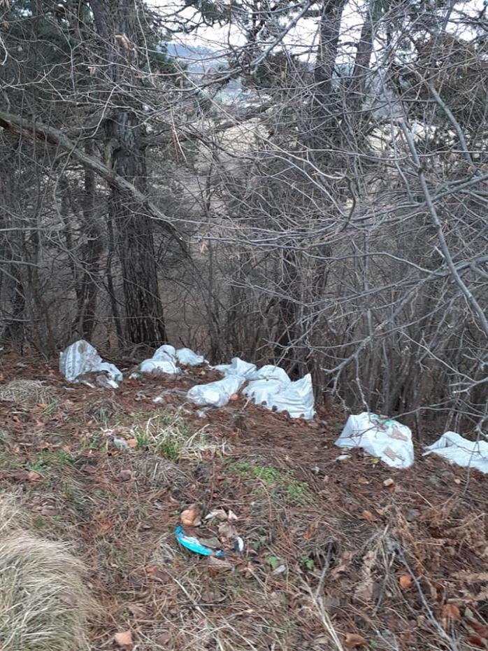 """Plin de deșeuri în pădurea din Feleacu! Saci de gunoaie """"abandonați"""" în natură"""