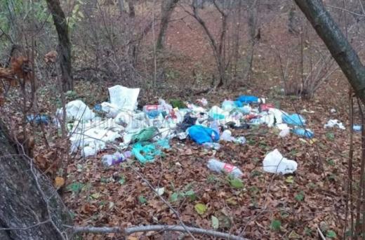Gunoaie aruncate în Pădurea Hoia-Baciu