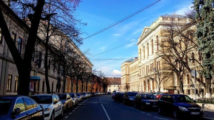 """Ce se întâmplă cu arborii de pe strada Kogălniceanu? Tarcea: """"Scopul nostru este să plantăm cât mai mulți"""""""