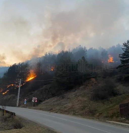 Incendiu de vegetație la Băișoara