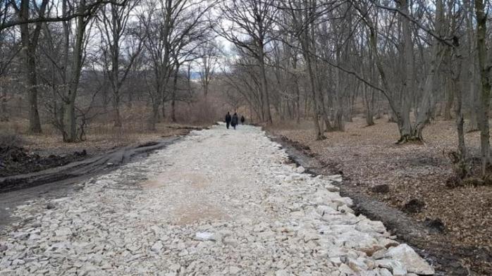 Pădurea Hoia Baciu, la un pas de asfaltare? Deja s-a turnaat pietriș pe unele drumuri. Sursă FOTO: Clujul Civic
