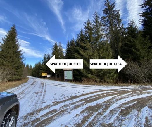 Bolojan și Dumitrel vor drumuri montane asfaltate, dar nu pot fără Cluj. Soarta Alianței Apusenilor, în mâinile lui Tișe