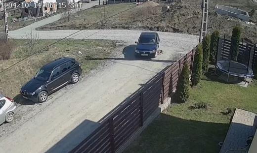 VIDEO. Un șofer din Cluj a călcat fără milă un câine care stătea pe mijlocul drumului