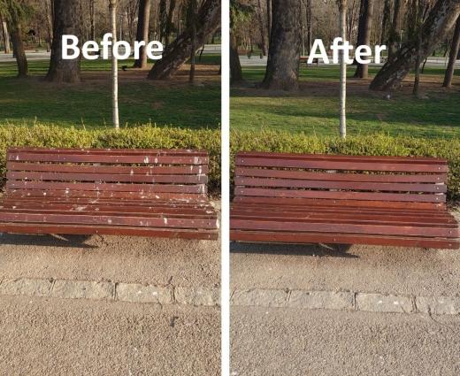 Un clujean a curățat o bancă din Parcul Central, plină de fecale de păsări