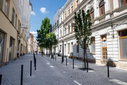 Apar terase și chioșcuri pe străzile Emile Zola și Sextil Pușcariu. Vor fi scoase la licitație
