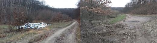 A dispărut rampa ilegală de gunoi din pădurea de pe Dealul Clujului.