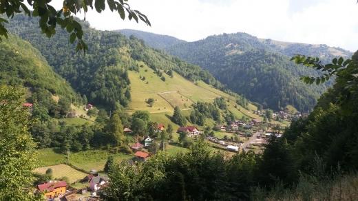 ZERO cazuri de COVID în ultimele două săptămâni în 12 localități din Cluj. Acolo, restricțiile sunt istorie