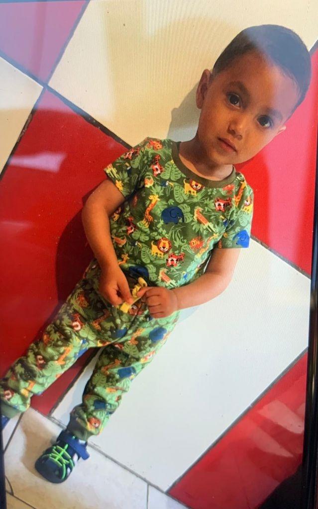 Copilul de doi ani dispărut ieri, găsit decedat.