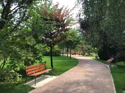 Doi tineri au spart cinci mașini din Cluj-Napoca și au dat cu spray lacrimogen într-un parc cu mulți oameni