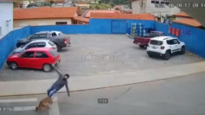 VIDEO VIRAL. Un CÂINE a lovit un BĂRBAT pe trecerea de PIETONI