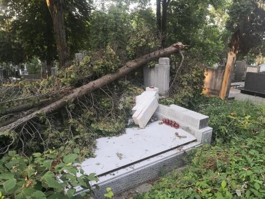 Furtuna de la Cluj a DISTRUS și MORMINTE! Cimitirul Central încă NU a fost curățat. FOTO