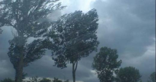 COD GALBEN de ploi torențiale și grindină, la Cluj. Până când e valabil?