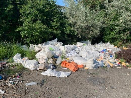 """""""Strada Gunoaielor"""", Câmpul Pâinii, rămâne îngropată în gunoi până când polițiștii locali îi identifică pe vinovați"""