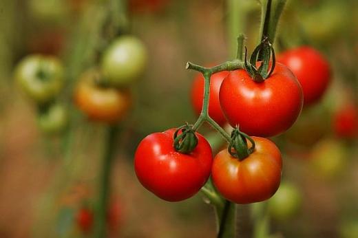 Legume și fructe toxice. Cum îți dai seama că legumele și fructele au fost tratate cu chimicale