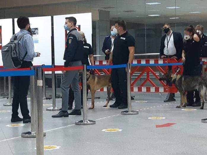 """FOTO. Câinii care depistează COVID-19, """"în misiune"""" pe Aeroportul Cluj"""